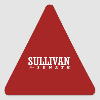 SULLIVAN FOR SENATE 2014 TRIANGLE STICKERS