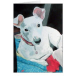 Sully the Jack Russell Terrier Greeting Card