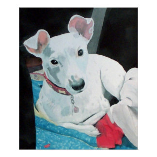 Sully the Jack Russell Terrier Print