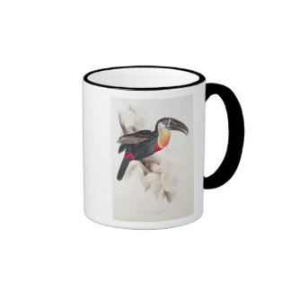 Sulphur and white breasted Toucan, 19th century Ringer Coffee Mug