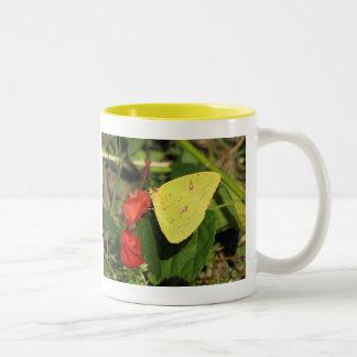 Sulphur Butterflies Mug