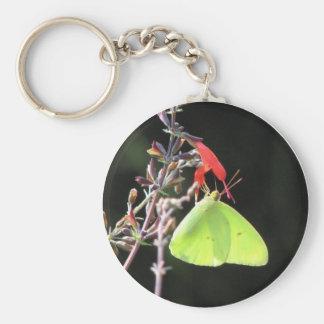 Sulphur Butterfly on Scarlet Sage Keychain