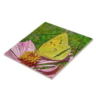 Sulphur Butterfly Tile