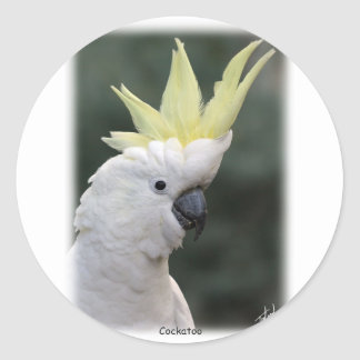 Sulphur Crested Cockatoo 9Y331D-005 Classic Round Sticker