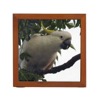 Sulphur-Crested Cockatoo Desk Organiser