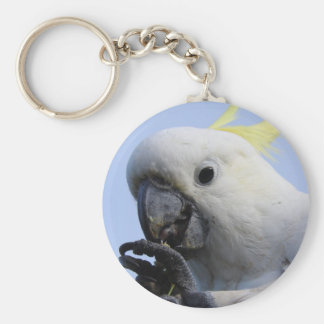 Sulphur-Crested Cockatoo Key Ring