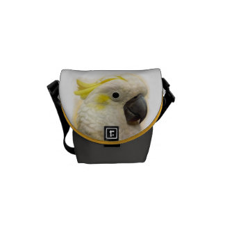Sulphur Crested Cockatoo realistic painting Courier Bag