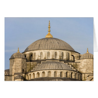 Sultan Ahmet Mosque Domes Card