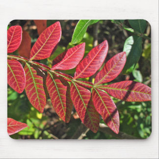 Sumac Leaves In Autumn Mousepads