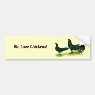 Sumatra Black Chickens Bumper Sticker