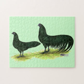 Sumatra Black Chickens Jigsaw Puzzles