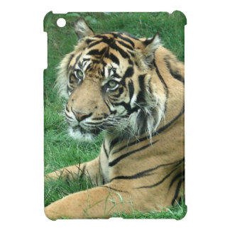 Sumatra Tiger On iPad Mini Case