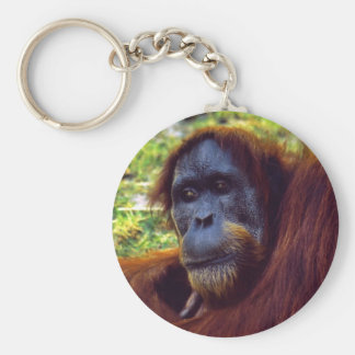 Sumatran Orangutan at Perth Zoo Keychain