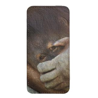 Sumatran Orangutan, Pongo pygmaeus iPhone SE/5/5s/5c Pouch