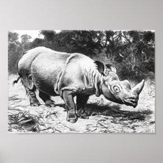 Sumatran rhinoceros - F.W. Kuhnert Portfolio Poster