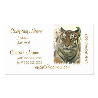 Sumatran Tiger Business Cards