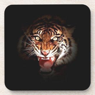 Sumatran Tiger Coaster