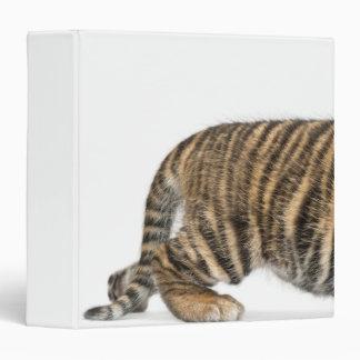 Sumatran Tiger cub 2 3 Ring Binder