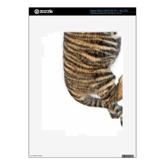Sumatran Tiger cub 2 iPad 3 Skin