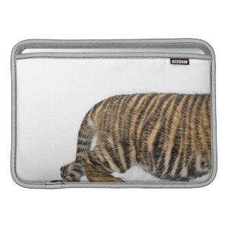 Sumatran Tiger cub 2 MacBook Sleeve