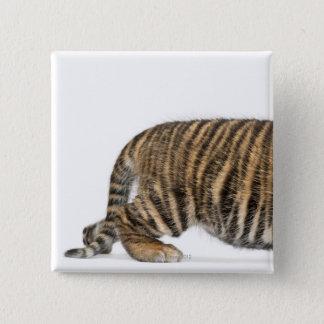 Sumatran Tiger cub 2 Pinback Button