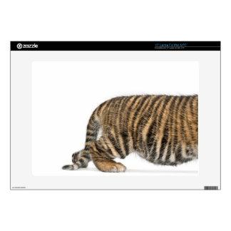 """Sumatran Tiger cub 2 15"""" Laptop Decal"""