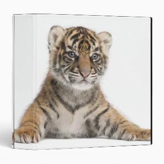 Sumatran Tiger cub Binder