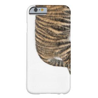 Sumatran Tiger cub - Panthera tigris sumatrae (3 Barely There iPhone 6 Case