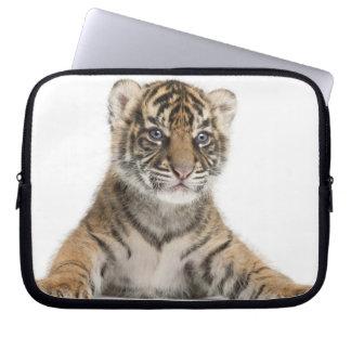 Sumatran Tiger cub - Panthera tigris sumatrae (3 Computer Sleeve
