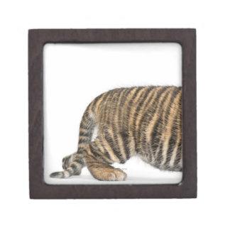 Sumatran Tiger cub - Panthera tigris sumatrae (3 Keepsake Box
