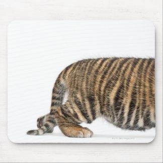 Sumatran Tiger cub - Panthera tigris sumatrae (3 Mouse Pad