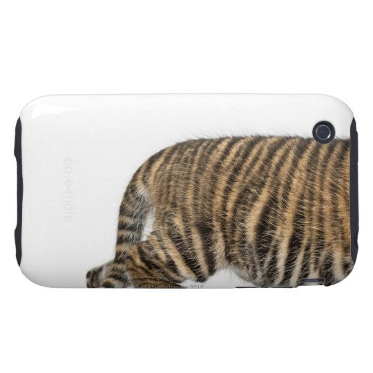 Sumatran Tiger cub - Panthera tigris sumatrae (3 Tough iPhone 3 Cover