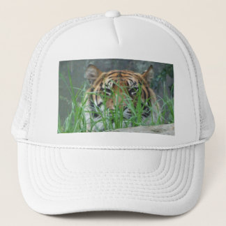 Sumatran Tiger Hat