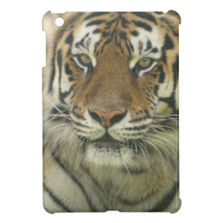 Sumatran Tiger iPad Mini Covers