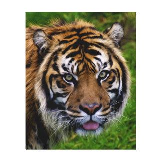 Sumatran Tiger Oil Paint Design Canvas Print
