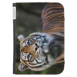 Sumatran Tiger (Panthera tigris sumatrae) Kindle Keyboard Covers