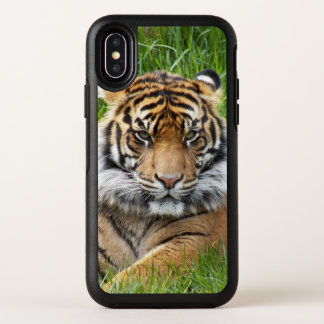 Sumatran Tiger Photo OtterBox Symmetry iPhone X Case