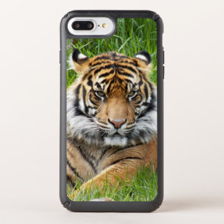 Sumatran Tiger Photo Speck iPhone 8/7/6 Plus Case