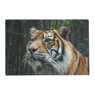 Sumatran Tiger Placemat Laminated Place Mat