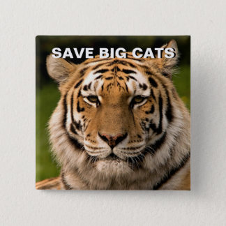 Sumatran Tiger Portrait Pinback Button