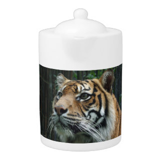 Sumatran Tiger Teapot