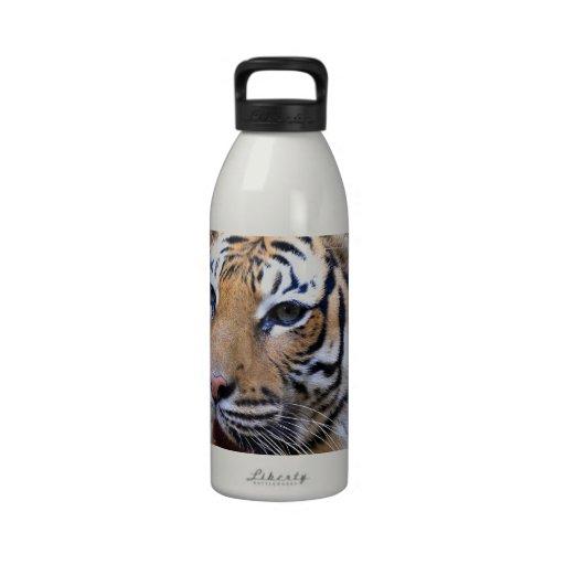 Sumatran Tiger Water Bottles