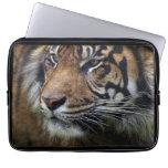 Sumatran Tiger Wild Animal Big Cat-Lover Laptop Computer Sleeves