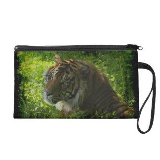 Sumatran Tiger Wild Animal Big Cat-Lover Purse Wristlet Clutches
