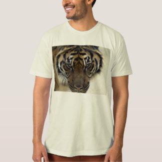 Sumatran Tiger Wild Animal Big Cat-Lover T-Shirt