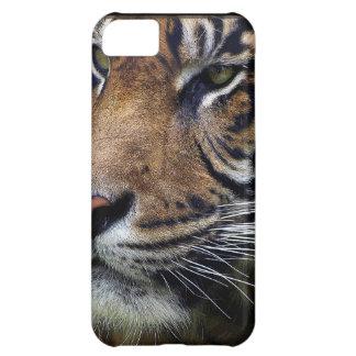 Sumatran Tiger Wildlife Big Cat-Lover iPhone 5C Cover