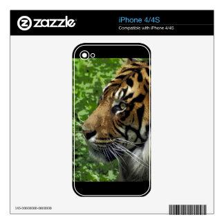 Sumatran Tiger Wildlife Big Cat-Lover Skins iPhone 4S Skin