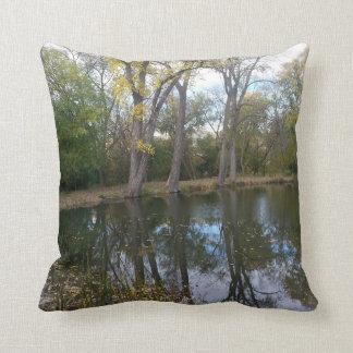 Sumer to Fall at Nixon Park Pillow