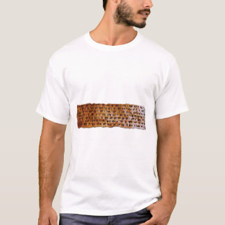 SUMERIAN CUNEIFORM WRITING T-Shirt series