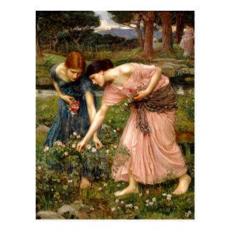 Summary John William Waterhouse (1849-1917) Gather Postcard